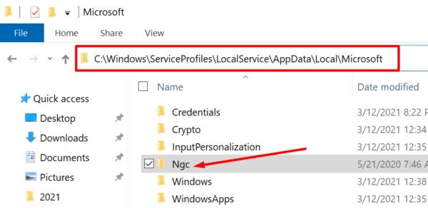 ¿Qué es la carpeta Ngc en Windows 10?