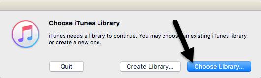 elige la biblioteca de iTunes
