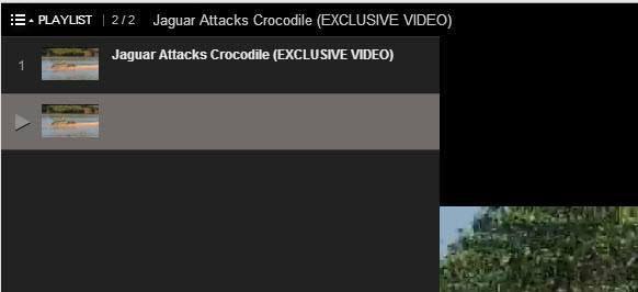 lista de reproducción de la URL de youtube