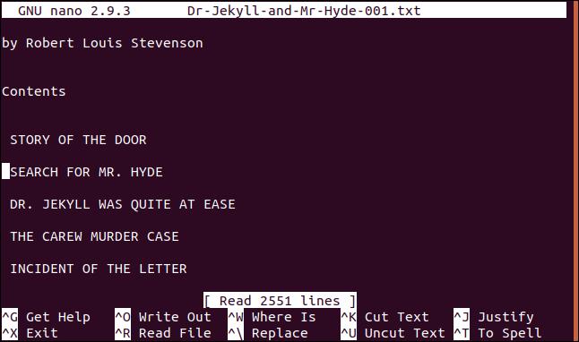 archivo cargado en el editor nano