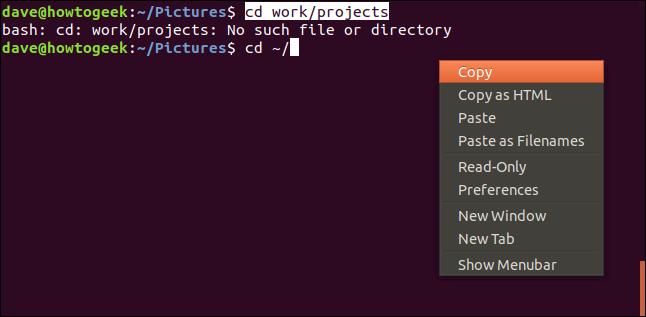 ventana de terminal con menú contextual y copia resaltada