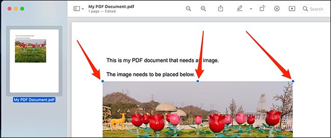 Utilice los identificadores de objetos para colocar y cambiar el tamaño de su imagen en el archivo PDF.
